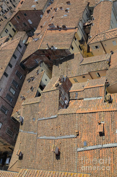 Renaissance Photograph - Lucca Italy by Edward Fielding