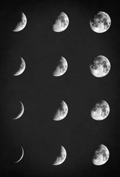 Planets And Moons Digital Art - Lunar Phases  by Zapista Zapista