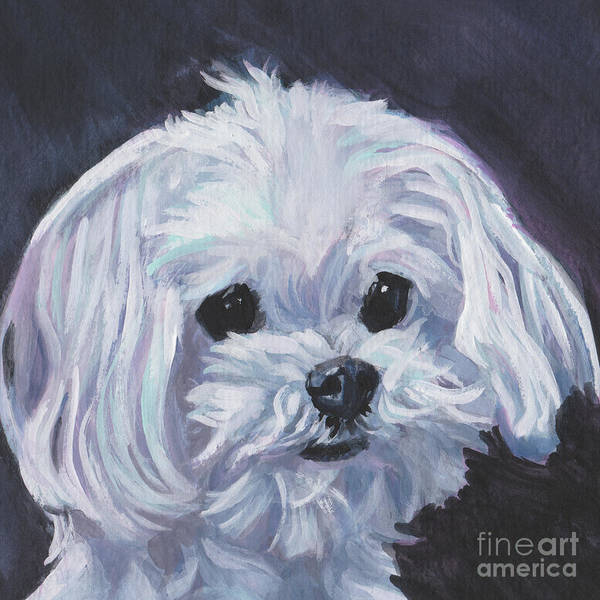 Wall Art - Painting - Maltese by Lee Ann Shepard