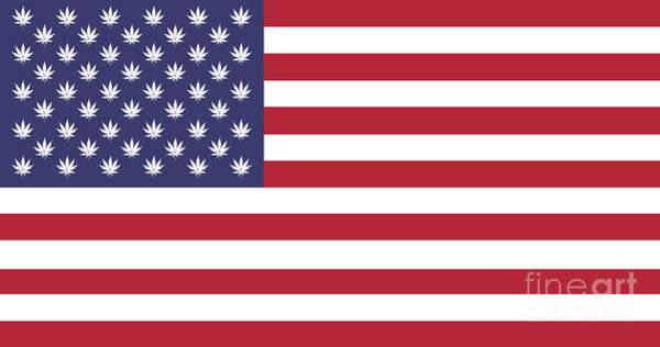 Digital Art - marijuana in USA Flag by Benny Marty