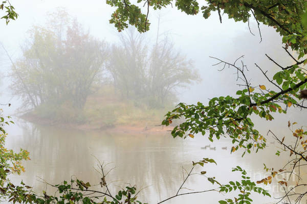 Photograph - Martin Park In The Fog by Richard Smith