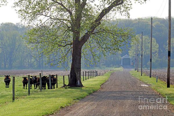 Rockville Photograph - Mcallister Covered Bridge, Indiana by Steve Gass
