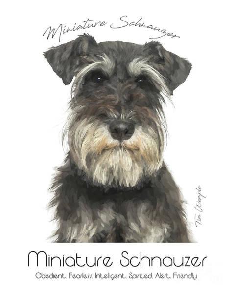 Digital Art - Miniature Schnauzer Poster by Tim Wemple