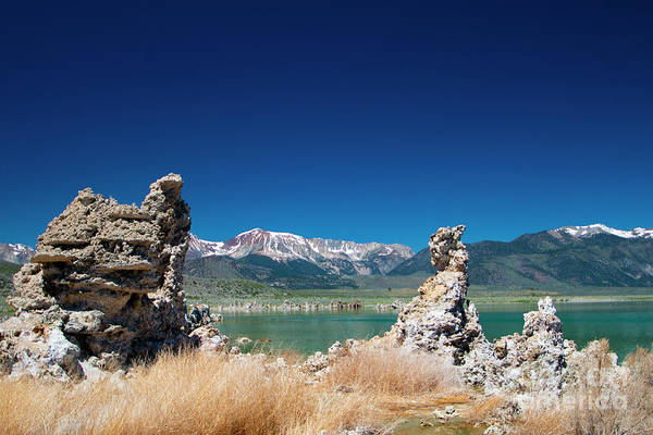 Photograph - Mono Lake Tufa by Mark Jackson