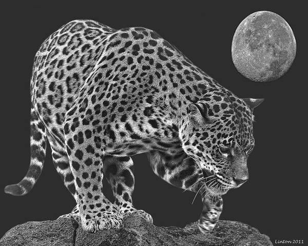 Digital Art - Moonlight Predator by Larry Linton