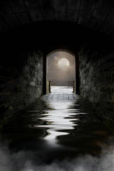 Photograph - Moonlight by Robin-Lee Vieira