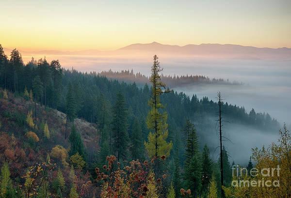 Wall Art - Photograph - Morning Glow by Idaho Scenic Images Linda Lantzy