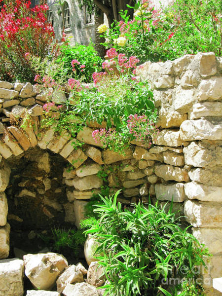 Photograph - Near Garden Tomb by Donna L Munro