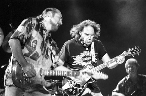 Crazy Horse Photograph - Neil Young by Wayne Doyle