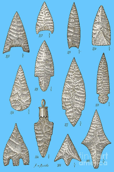 Photograph - Neolithic And Bronze Age Arrowheads by Science Source