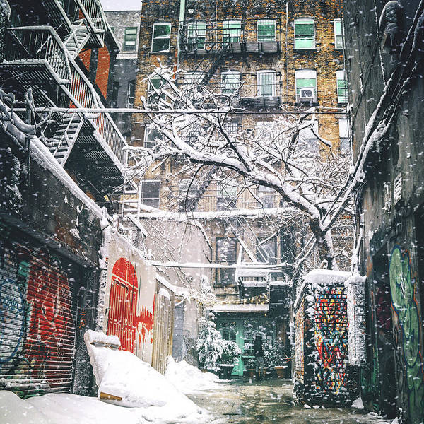 Wall Art - Photograph - New York City Snow by Vivienne Gucwa