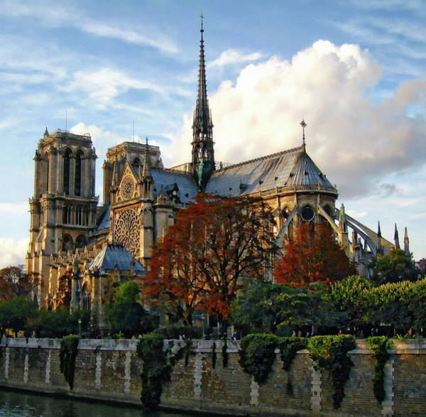 Photograph - Notre Dame Cathedral by Anthony Dezenzio