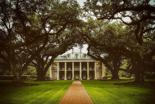 Wall Art - Photograph - Oak Alley Plantation - Louisiana by Mountain Dreams