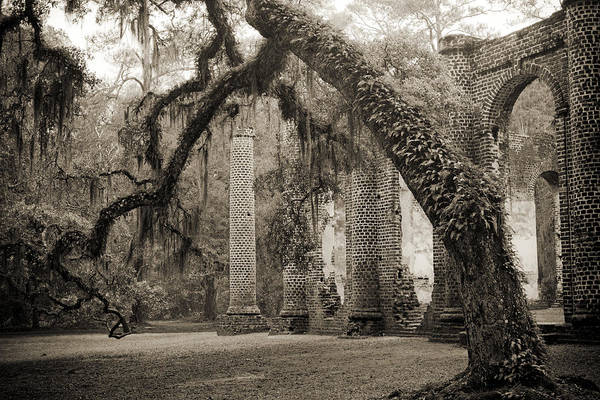 Old Church Photograph - Old Sheldon Church Ruins by Dustin K Ryan