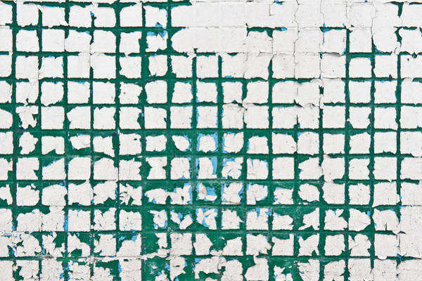 Glazed Tiles Photograph - Old Tiles by Tom Gowanlock