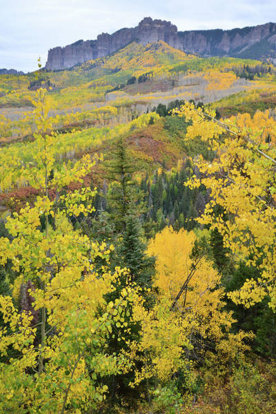 Photograph - Owl Creek Pass by Ray Mathis