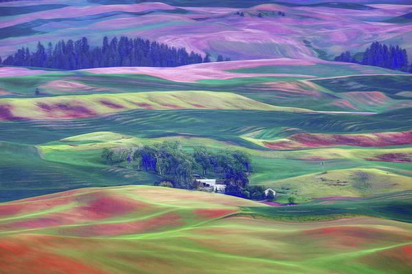 Wall Art - Photograph - Palouse - Washington - Farms - 8 by Nikolyn McDonald