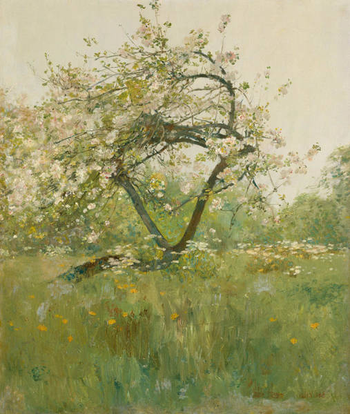 Painting - Peach Blossoms - Villiers-le-bel by Childe Hassam