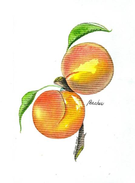 Wall Art - Painting - Peaches by Melody Allen
