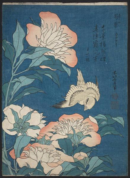 Painting - Peonies And Canary by Katsushika Hokusai