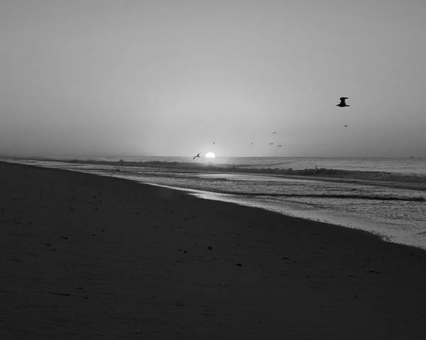 Photograph - Placid Sunrise Bw by Newwwman