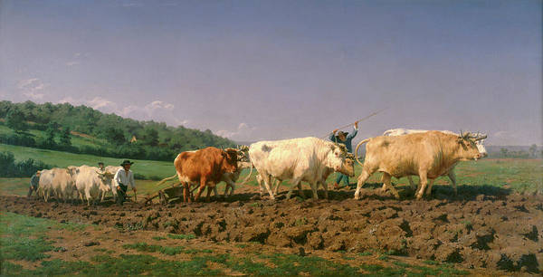 Ploughing Painting - Ploughing In Nevers by Rosa Bonheur