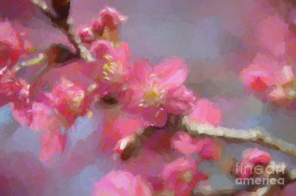 Blooming Tree Mixed Media - Plum Blossom - Bring On Spring Series by Andrea Anderegg