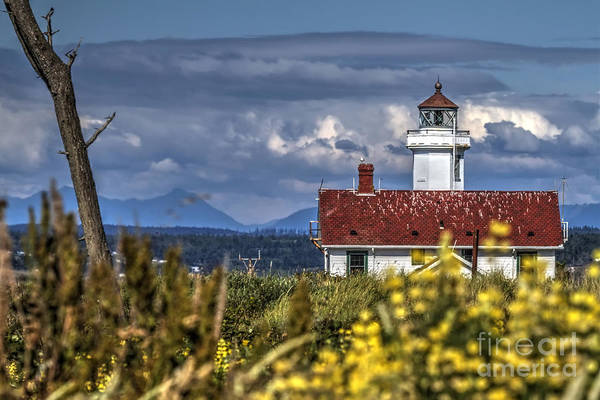 Wall Art - Photograph - Point Wilson Lighthouse by Rick Mann