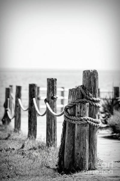 Photograph - Post With Rope by Ed Taylor