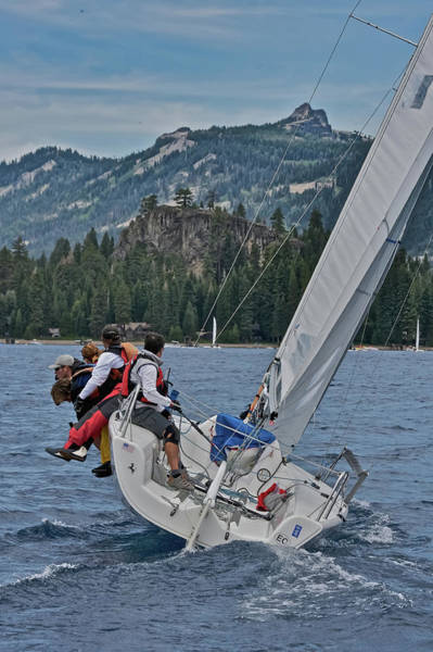 Photograph - Pure Tahoe by Steven Lapkin