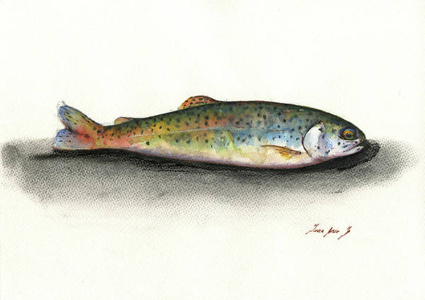 Fly Fishing Painting - Rainbow Trout by Juan Bosco