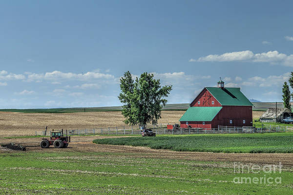 Wall Art - Photograph - Red Barn  by Rick Mann