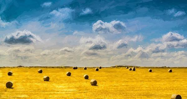 Photograph - Round Straw Bales Landscape by John Williams