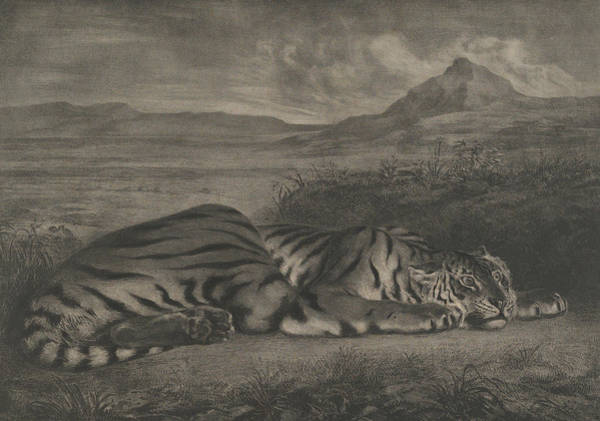 Wall Art - Relief - Royal Tiger by Eugene Delacroix