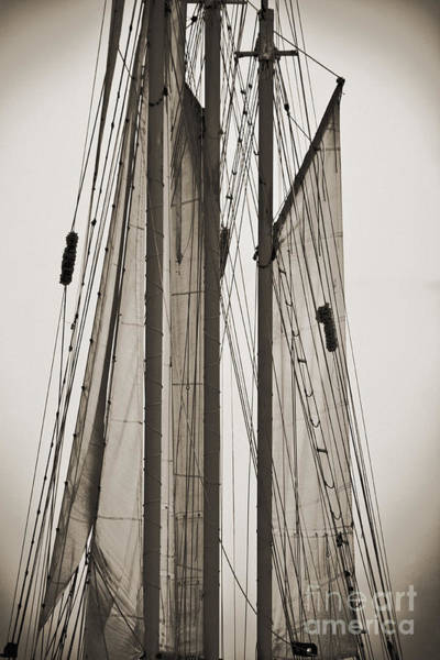 Rigging Photograph - Schooner Pride Tall Ship Charleston Sc by Dustin K Ryan