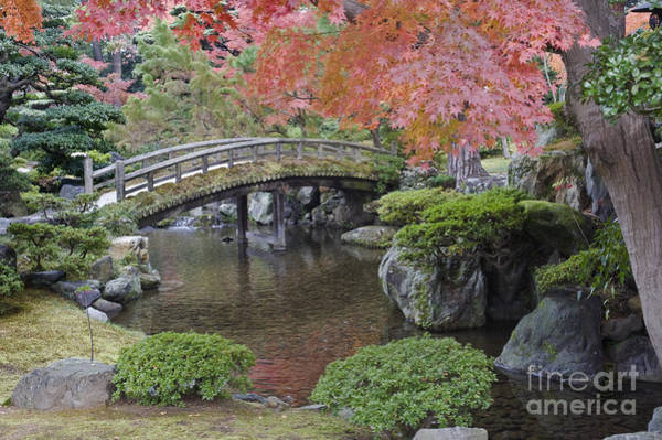 Wall Art - Photograph - Sento Imperial Palace Gardens Lake by Rob Tilley