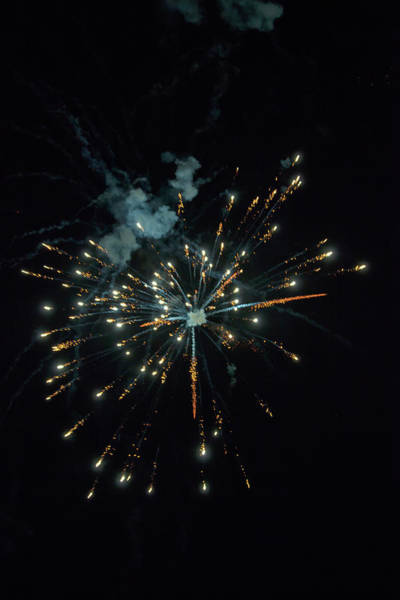Photograph - Shining Colorful Firework Over A Dark Night Sky by Gina Koch