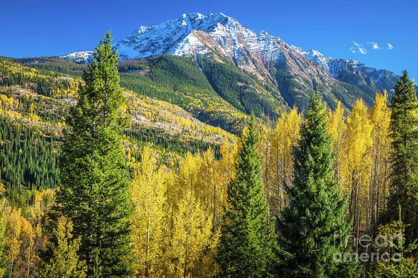 Photograph - Snowdon Peak by Inge Johnsson