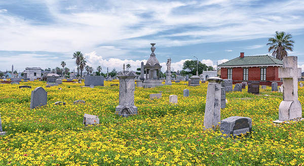 Photograph - Springtime At The Cemetery by Victor Culpepper