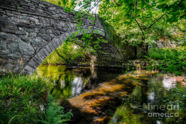 Riverside Photograph - Stone Bridge by Adrian Evans