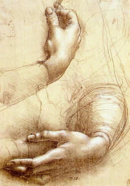 Close Up Drawing - Study Of Hands by Leonardo da Vinci