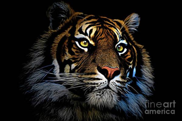 Wall Art - Photograph - Sumatran Tiger  by Sheila Smart Fine Art Photography