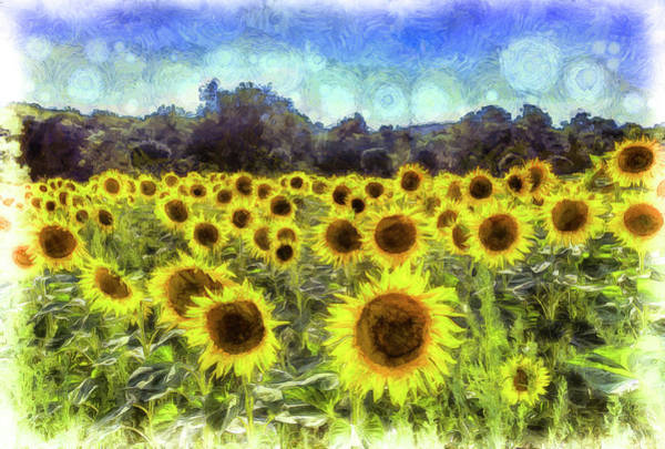 Wall Art - Photograph - Sunflowers Van Gogh by David Pyatt