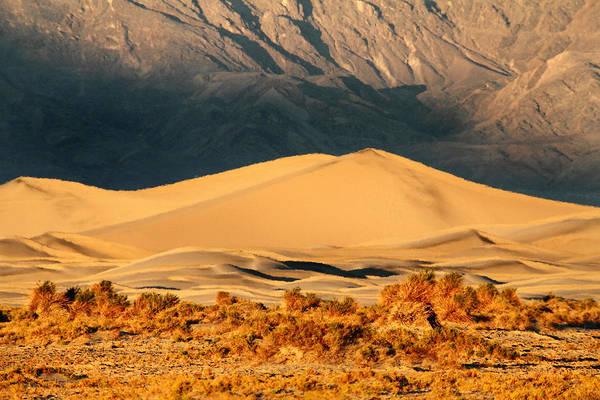 Photograph - Sunrise At Mesquite Sand Dunes by Pierre Leclerc Photography