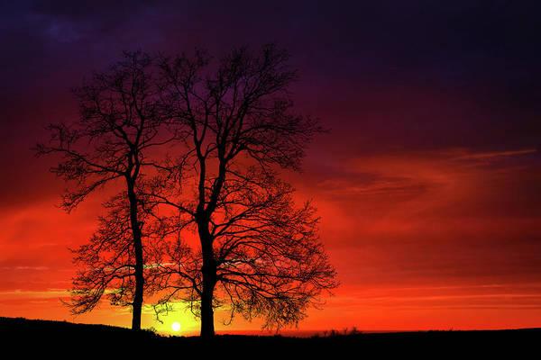 Wall Art - Photograph - Sunset by Bess Hamiti