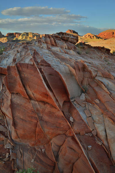 Photograph - Sunset Comes To Valley Of Fire by Ray Mathis