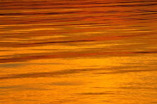 Wall Art - Photograph - Sunset by Silke Magino