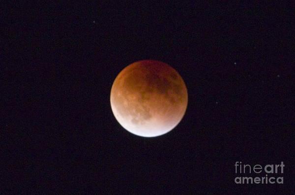 Photograph - Super Blood Moon by Steve Krull
