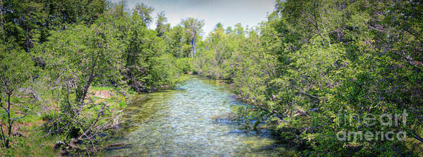 Photograph - Taylor Creek by Joe Lach