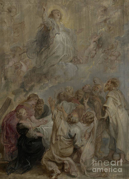 Ascension Painting - The Assumption Of The Virgin by Peter Paul Rubens